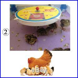 10 Egg Chicken Incubator Digital Fully Automatic, Battery & Solar powered