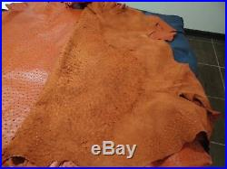 NEW Grade A 100% Genuine Ostrich Skin Finished Leather (Cognac) (15.5 Sqft)