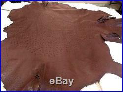 NEW Grade A 100% Genuine Ostrich Skin Finished Leather (Dark Brown) (14.5 Sqft)