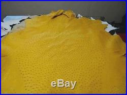 NEW Grade B 100% Genuine Ostrich Skin Finished Leather (Yellow) (17 Sqft)